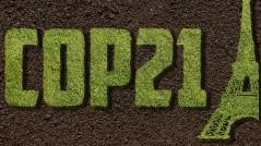 COP_21_Grass