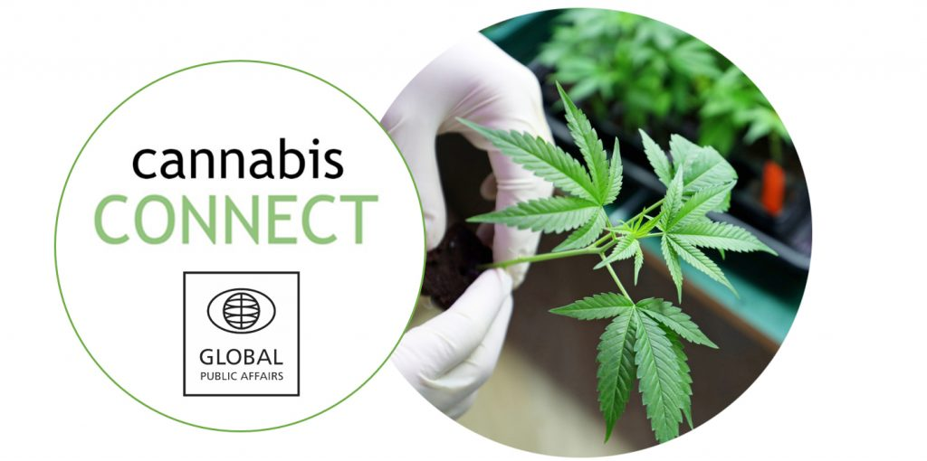Cannabis Connect heading
